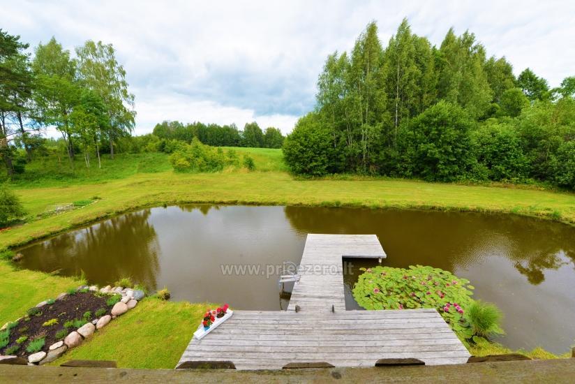 Countryside homestead Beržų giraitė in Ignalina district - 23