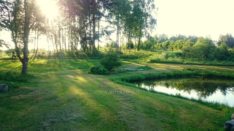 Countryside homestead Beržų giraitė in Ignalina district - 26