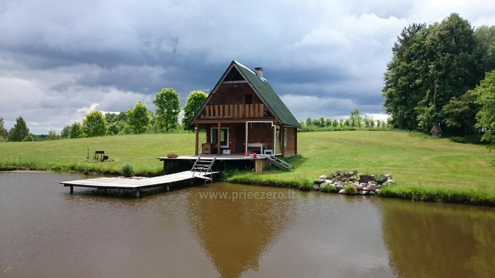 Countryside homestead Beržų giraitė in Ignalina district - 4