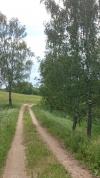 Усадьба Березовая роща в Игналинском районе на берегу водоема - 40
