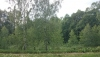 Countryside homestead Beržų giraitė in Ignalina district - 38