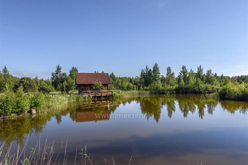 Homstead - guest house PAMARIO BURĖ near Curonian lagoon with a restaurant, sauna - 14