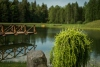 Homestead near Kaunas Vilaite - conferences, events up to 60 persons - 5