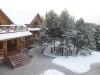 Manor Dvaro Sodyba 30 km from Vilnius - 31