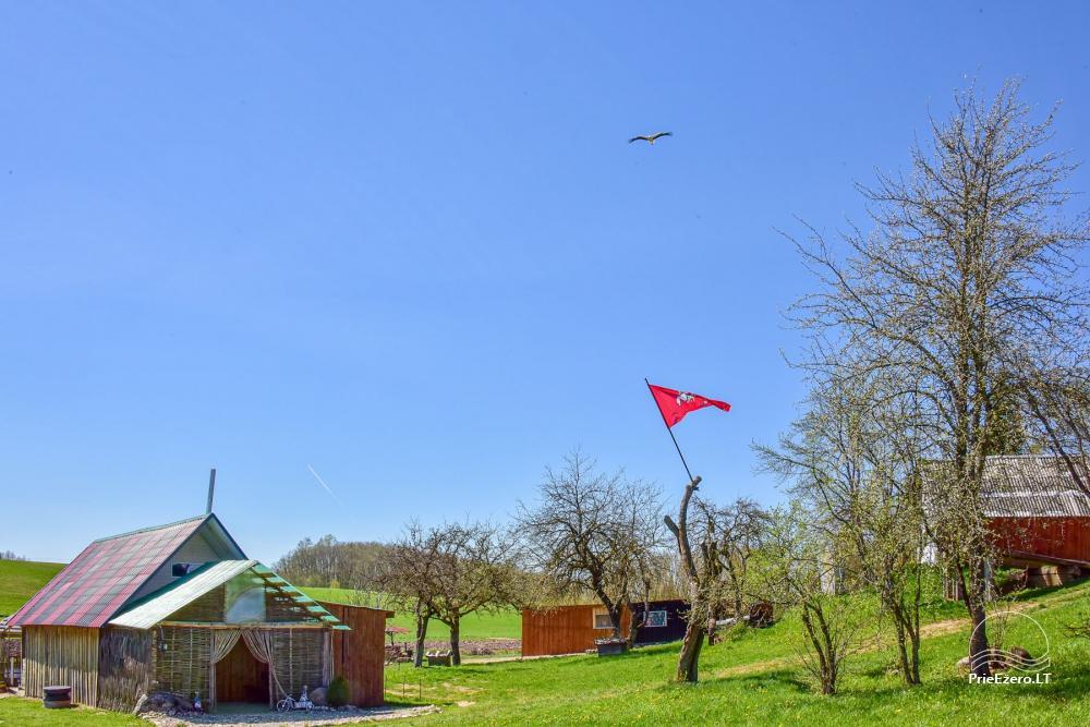 Wieś zagroda Stasiuko sodyba w Trockim rejonie - 32