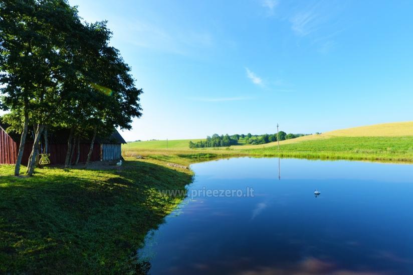 Wieś zagroda Stasiuko sodyba w Trockim rejonie - 36