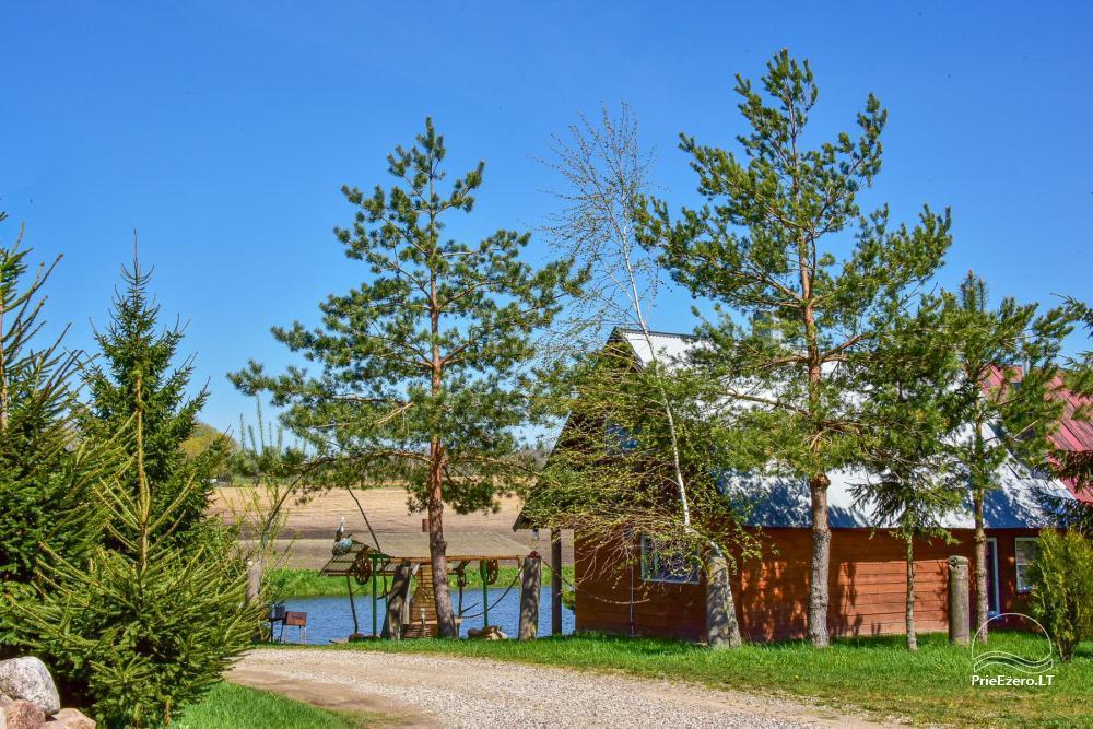 Wieś zagroda Stasiuko sodyba w Trockim rejonie - 21
