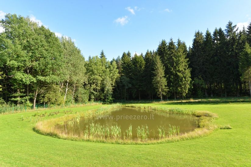 Homestead 15km from Vilnius dosntown: villas, hall, saunas, hot tub - 29