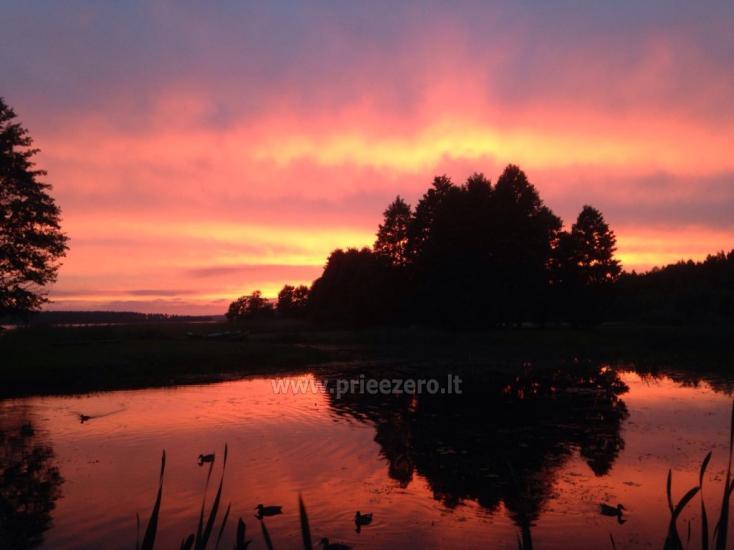Кемпинг на берегу озера Usma в Латвии - 5