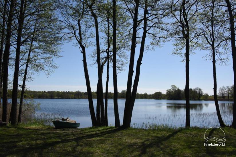 Holiday cottages for rent not far from Sventoji (sauna, horses) - 19