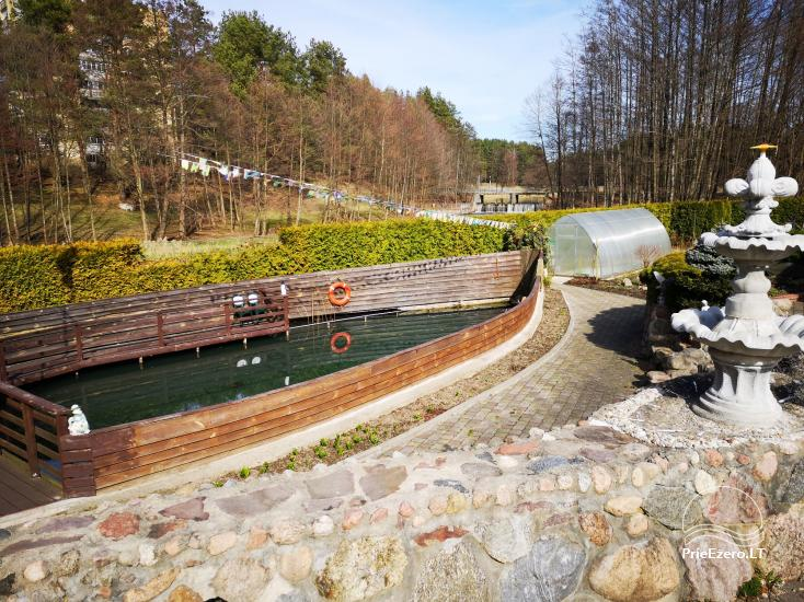 Domek do wynajęcia w Druskiennikach w pobliżu rzeki Ratnyčėlė - 6
