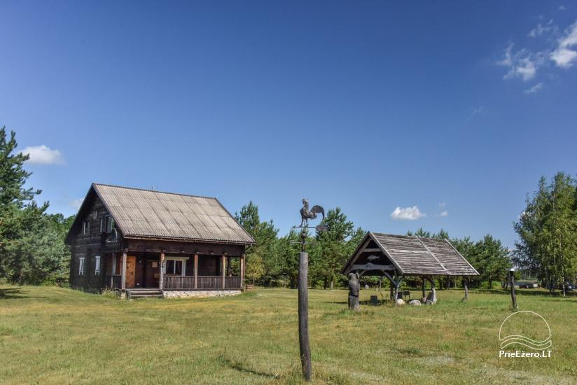Homestead on the shore of the lake Sartai in Zarasai district Lapėnų Sodyba – holiday cottages - 22