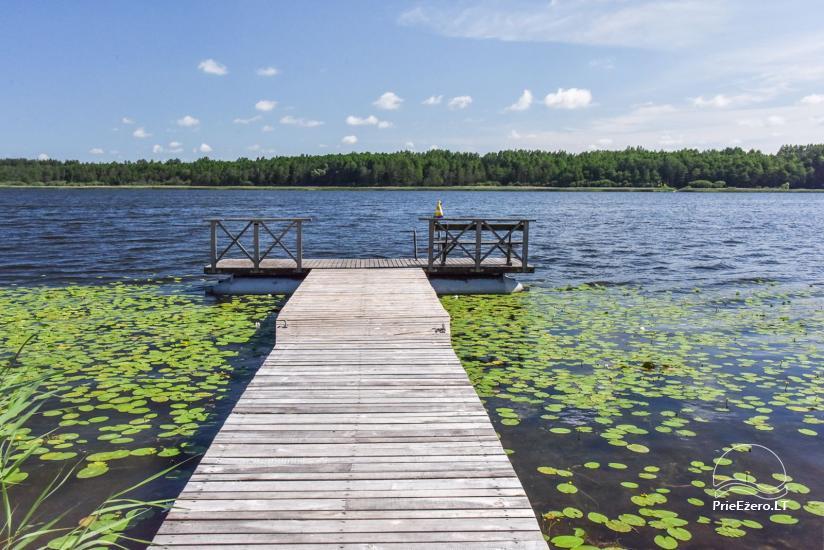 Gehöft am Ufer des Sees Sartai im Bezirk Zarasai Lapėnų Sodyba - Ferienhutten - 3