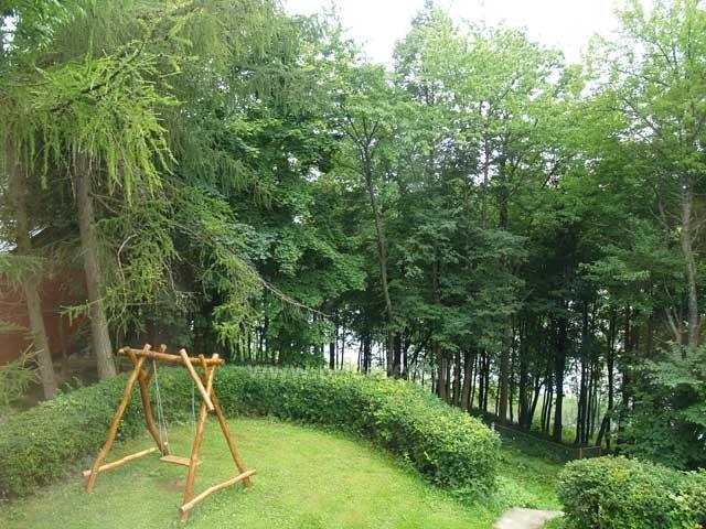 Wieś Homestead pobliżu Skaistis jeziora zaledwie 25 km od Wilna - 9