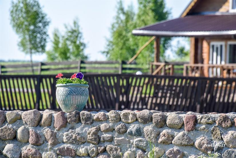 Golden fish -  countryside homestead with sauna for holidays and celebrations, canoe rental - 31