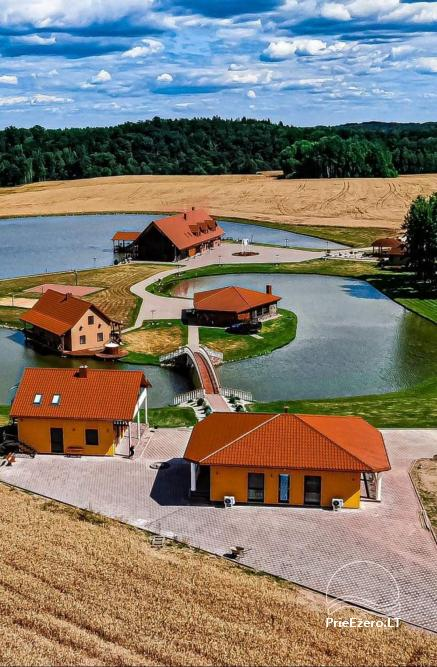 Countryside homestead with sauna Blue Wave in Lithuania - 2