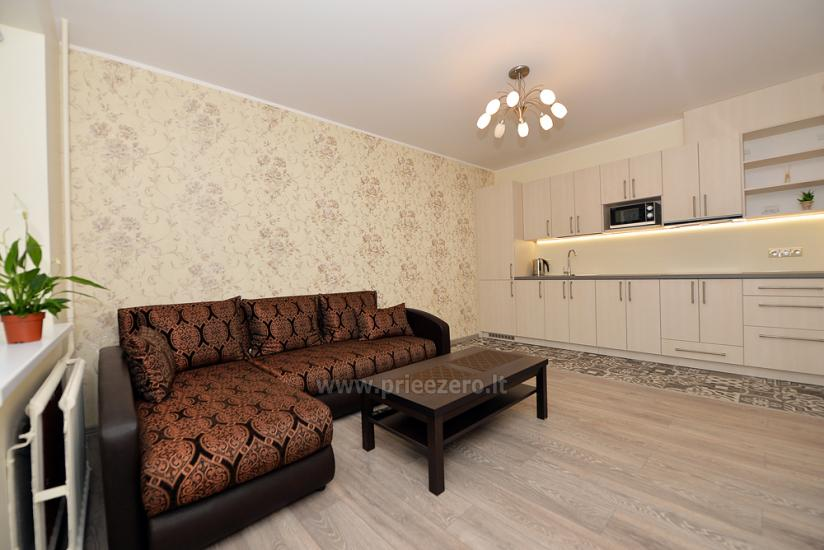 Short-term apartment rental in Kaunas - 1