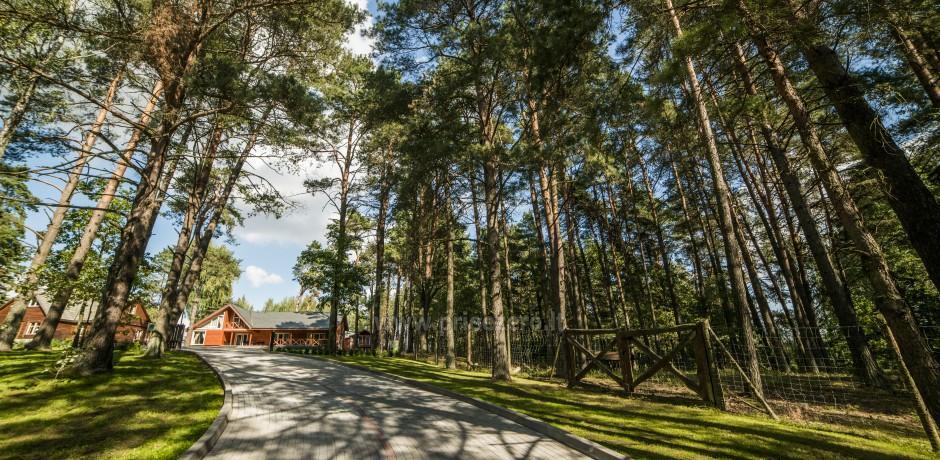 Отдых в Кернаве - yсадьба возле Кернаве в Литве - 8