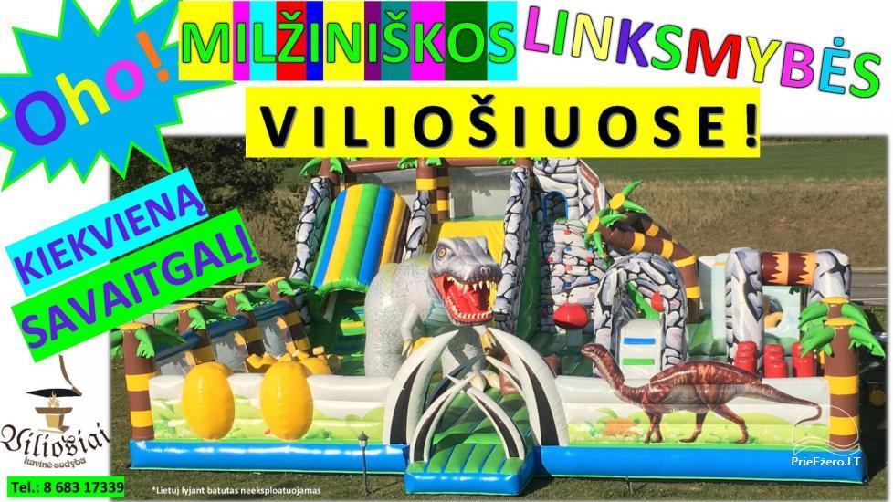Место для вашего праздника!- сельская усадьба Vilosiai - 18