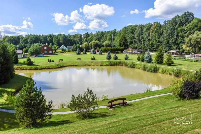 Countryside tourism homestead ILGAS KIEMAS - 42