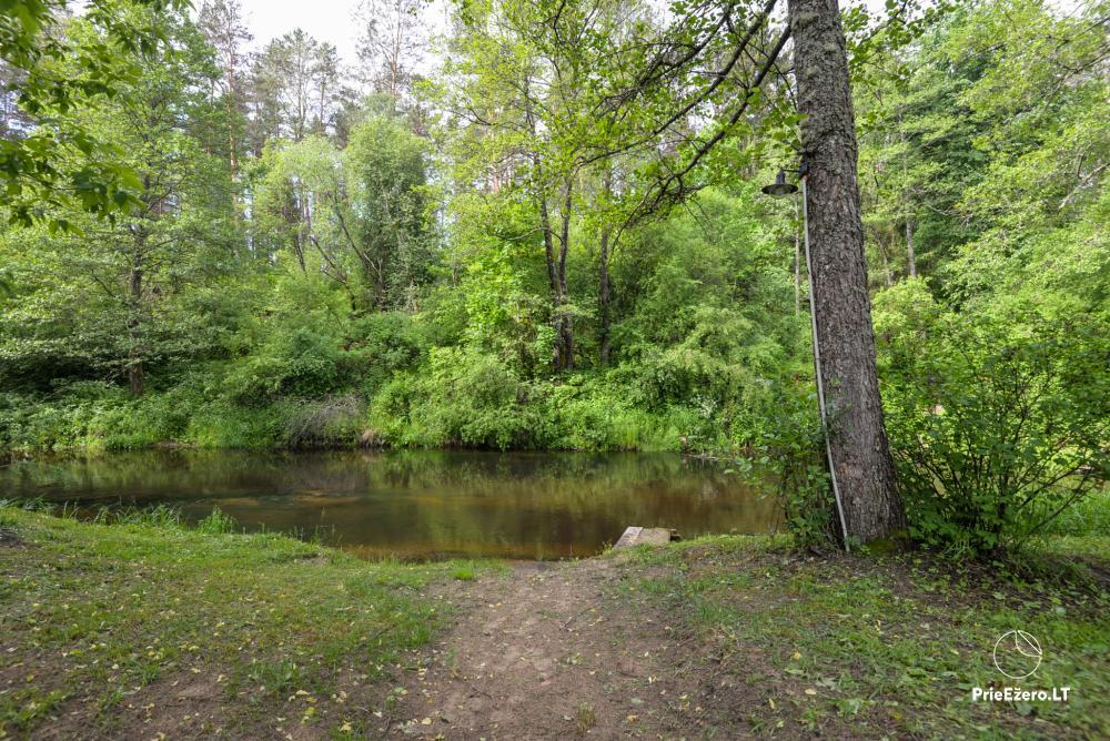 Rest near the river Ula in Varena region - homestead Ūlos akis - 13