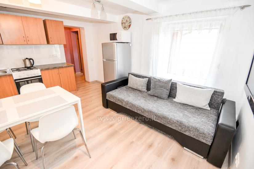 Two rooms apartment in Druskininkai Mint - 5