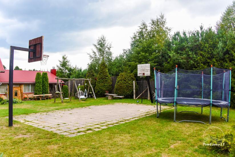 Wille, sauna, hala wynajem 10 km od Kłajpedy, w pobliżu minizoo, Jonušas - 4