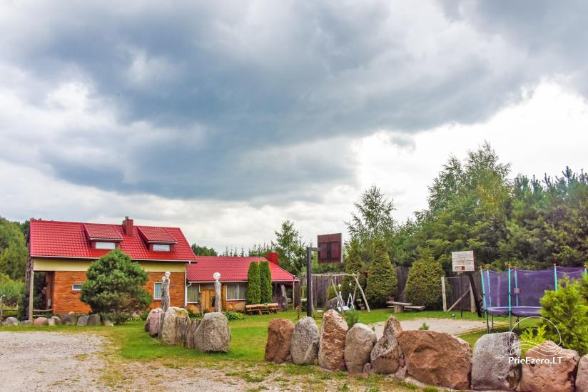 Wille, sauna, hala wynajem 10 km od Kłajpedy, w pobliżu minizoo, Jonušas - 5
