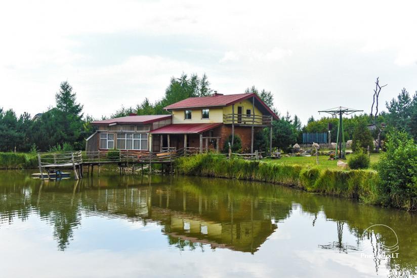Wille, sauna, hala wynajem 10 km od Kłajpedy, w pobliżu minizoo, Jonušas - 2