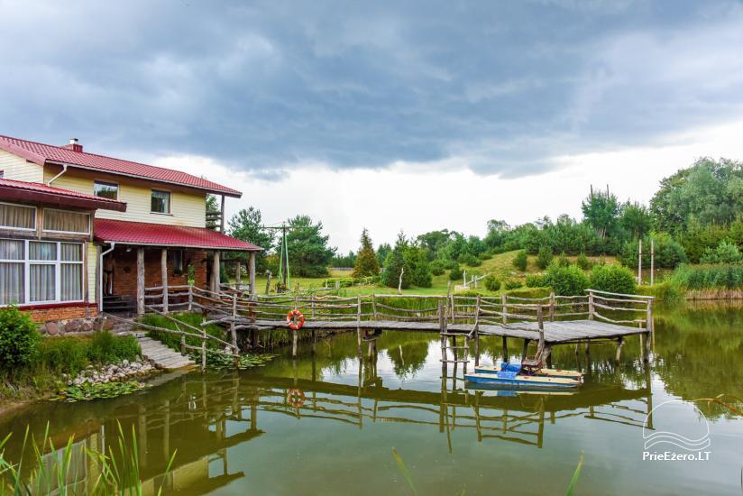 Wille, sauna, hala wynajem 10 km od Kłajpedy, w pobliżu minizoo, Jonušas - 7