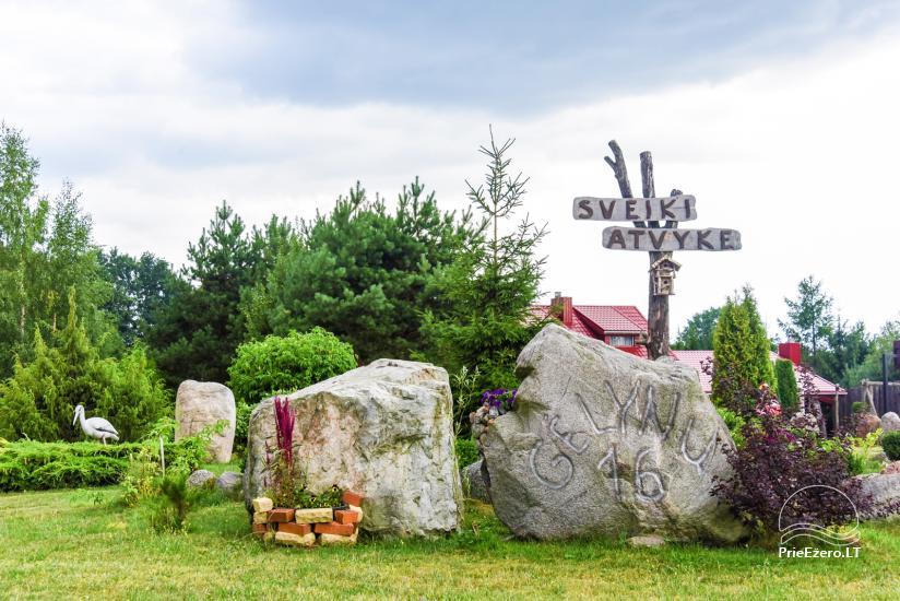 Wille, sauna, hala wynajem 10 km od Kłajpedy, w pobliżu minizoo, Jonušas - 10