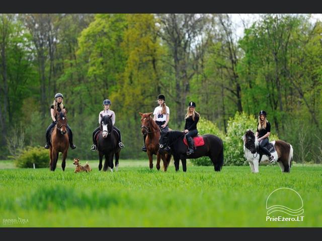 Countryside homestead near the lake in Vilkaviskio region, in Lithuania - 11