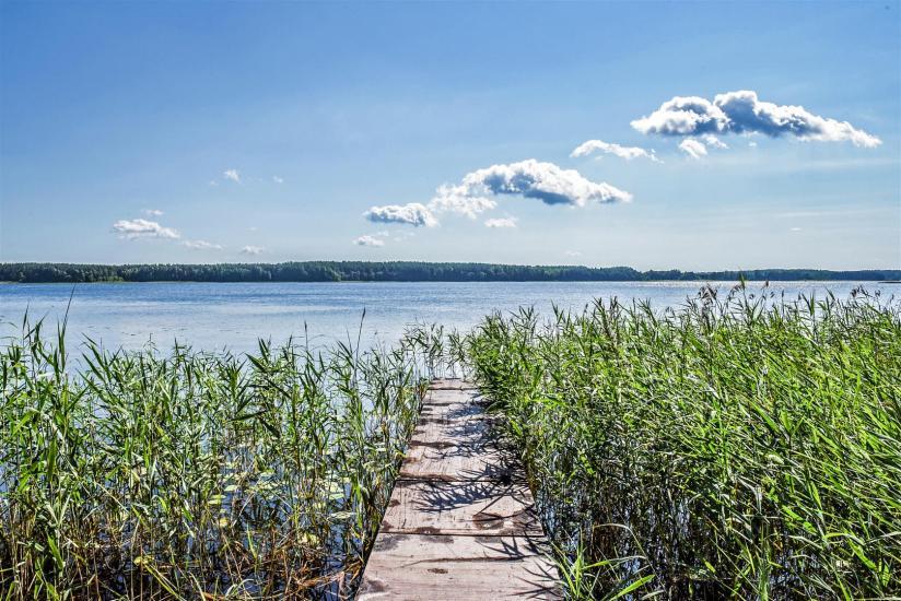 Małe domki letniskowe nad jeziorem Arino na Litwie, w regionie Moletai - 14