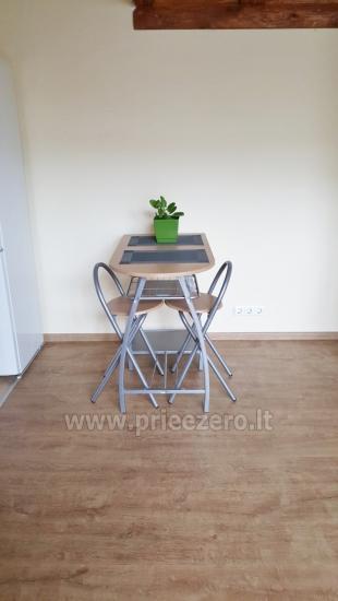 Апартаменты «Jone» в Друскининкай, в Литве - 4