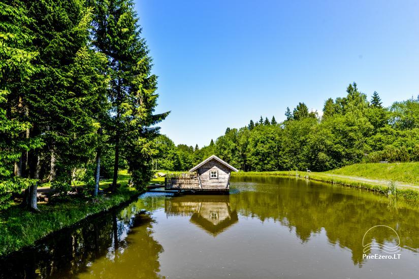 Miško rojus - hut over water - 5