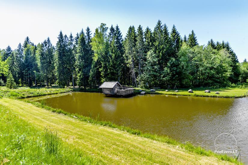 Miško rojus - hut over water - 7