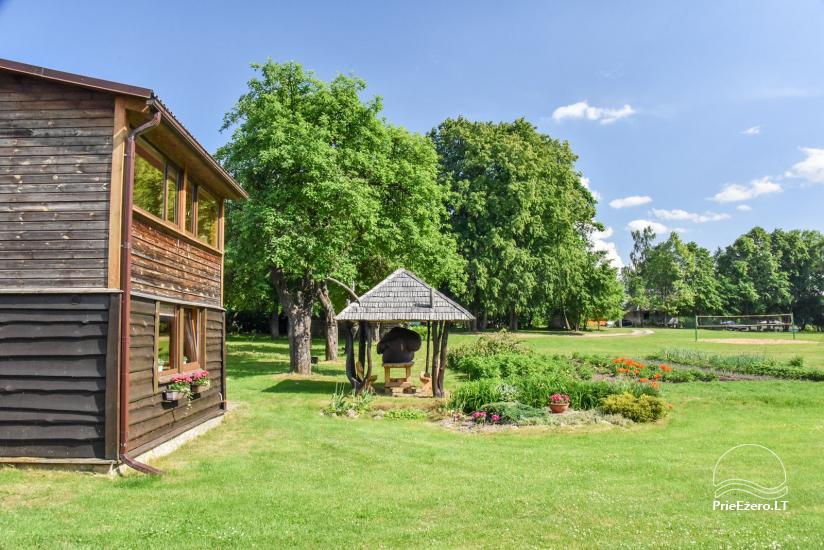 Countryside homestead by the lake in Ignalina region, in Lithuania - 3