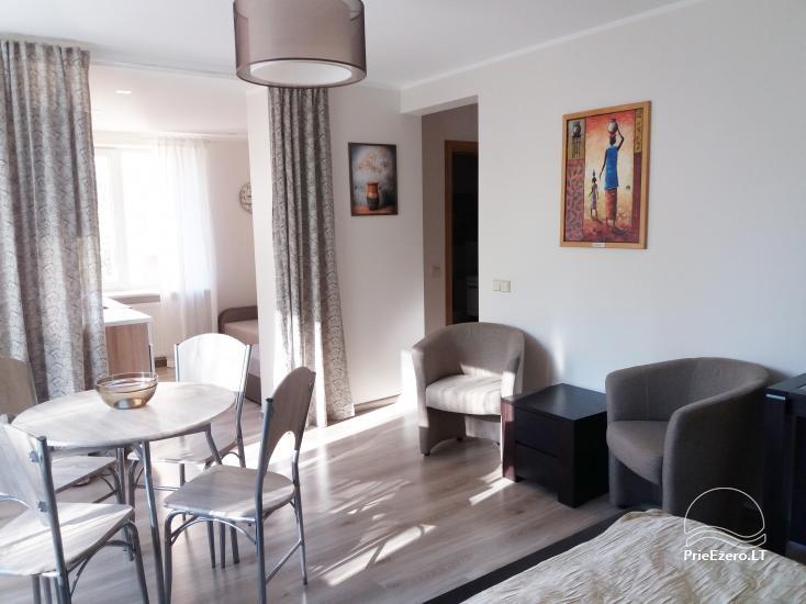 Apartment in Druskininkai Pas Indrę - 4
