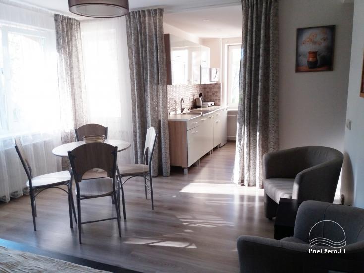 Apartament w Druskiennikach Pas Indrę - 7