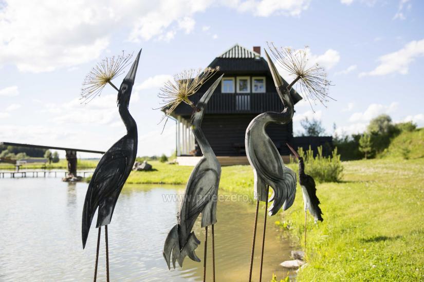 Countryside tourism homestead Broniaus - 3