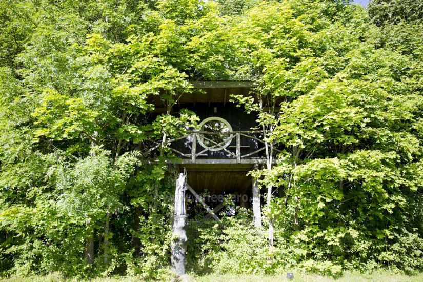 Countryside tourism homestead Broniaus - 22