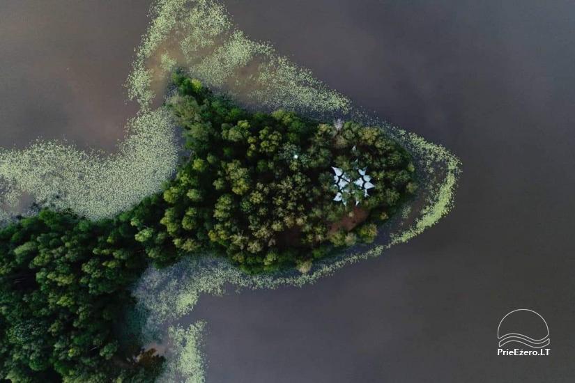 Усадьбa  Želvynė в Молетском регионе недалеко от обсерватории - 3