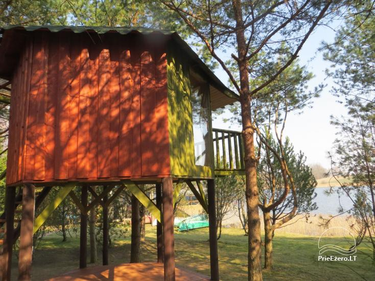 Holiday cottages, bathhouse, hot tub, kayaks in homestead at the lake Dviragis - 32