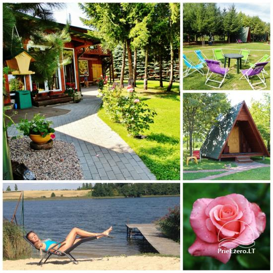 Holiday cottages, bathhouse, hot tub, kayaks in homestead at the lake Dviragis - 1