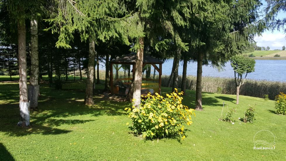 Holiday cottages, bathhouse, hot tub, kayaks in homestead at the lake Dviragis - 55