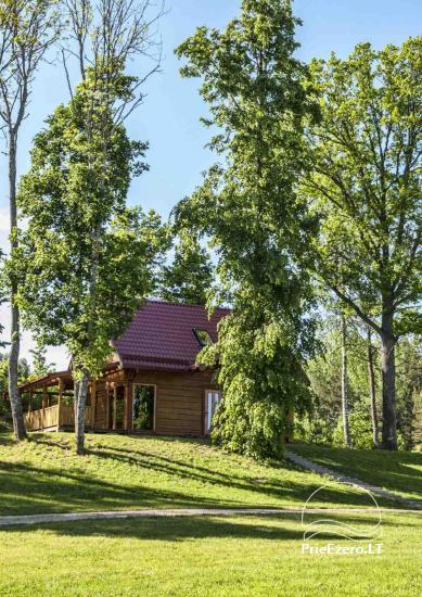 Countryside homestead in Ignalina region near the lake Pakalas - 4