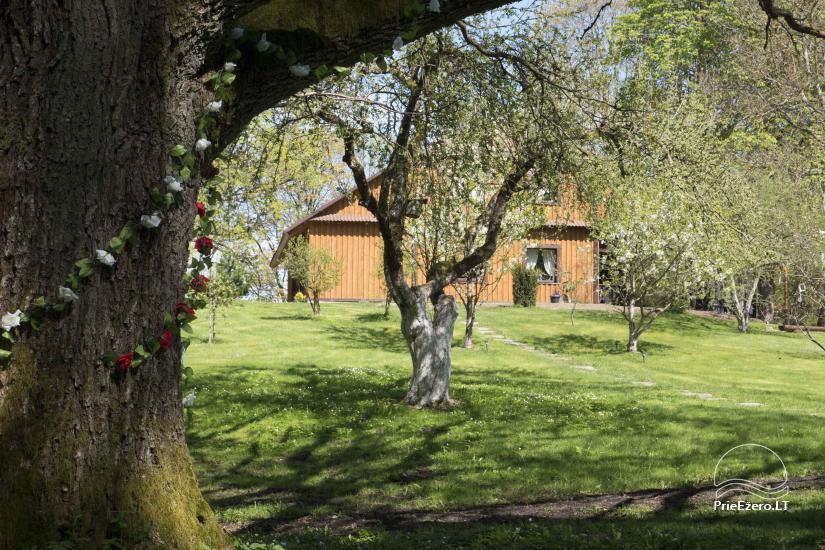 Wieś zagroda w Kielmskim rejonie w pobliżu jeziora Sodyba Dūksta - 4