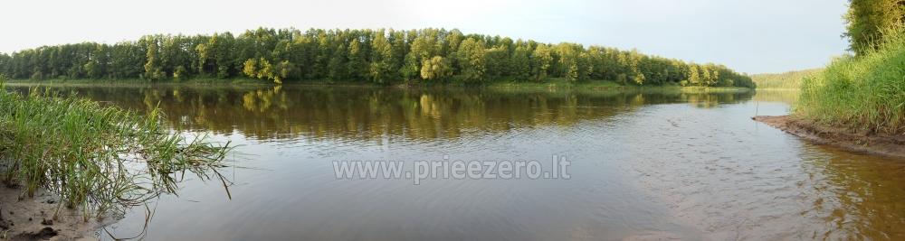 Villa Žiogeliai in Druskininkai: Ferienhäuser, Sauna - 55