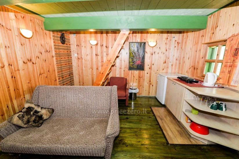 Villa Žiogeliai in Druskininkai: Ferienhäuser, Sauna - 45