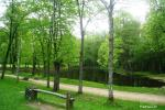 Sommerhaus in Jurbarkas Region - 7